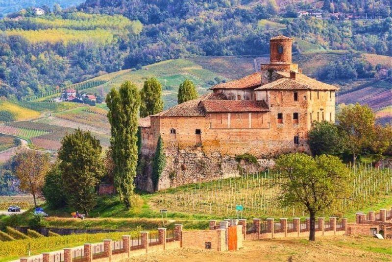 Vin- och tryffel i Piemonte